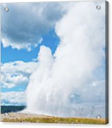Old Faithful  Acrylic Print