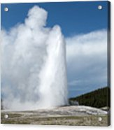 Old Faithful Erupts Acrylic Print