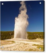 Old Faithful IIi Acrylic Print