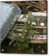 Old Ford Truck Acrylic Print