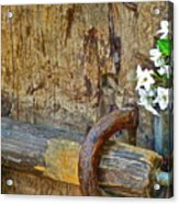 Old Gate Acrylic Print