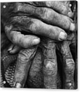 Old Hands 3 Acrylic Print