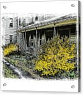 Old Homeplace Acrylic Print