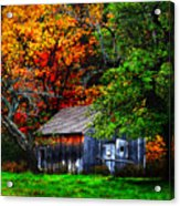 Old Homestead And The Apple Tree Acrylic Print