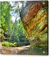 Old Man's Gorge Trail Hocking Hills Ohio Acrylic Print