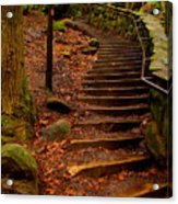 Old Man's Stairs Acrylic Print