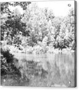 Old Michigan Creek Acrylic Print