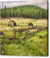 Old Montana Homestead Acrylic Print by Sharon Foster