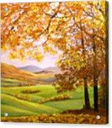 Old Oak Tree On A High Hill II Acrylic Print