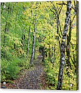 Old Rr Right-away Acrylic Print