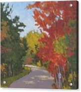 Old Scoolhouse Road Fall - Art By Bill Tomsa Acrylic Print