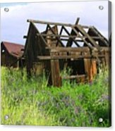 Old Shack At The Gorge Ba 3000 Acrylic Print
