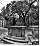 Old Sheldon Church Ruins Beaufort Sc Black And White Acrylic Print