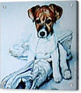 Old Shoe Pup Acrylic Print
