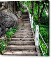 Old Steps Acrylic Print