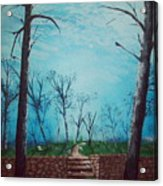 Old Steps To The Horizon Acrylic Print