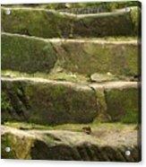 Old Stone Steps Acrylic Print