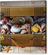 Old Suitcase Full Of Sea Shells Acrylic Print by Garry Gay