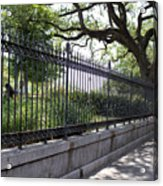 Old Tree And Ornate Fence Acrylic Print