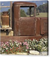 Old Truck In Tennessee Acrylic Print