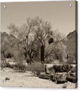 Old Tucson Landscape  Acrylic Print