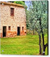 Old Villa And Olive Trees Acrylic Print