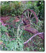 Old Wagon Wheels 2 Acrylic Print