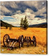 Old Wagons In Meadow Acrylic Print