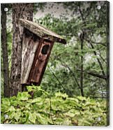Old Weathered Worn Bird House In Summer Acrylic Print