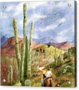Old Western Skies Acrylic Print