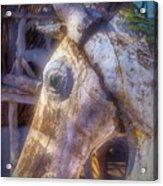 Old Wooden Horse Head Acrylic Print