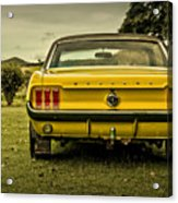 Old Yellow Mustang Rear View In Field Acrylic Print