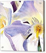 Oleander By Irina Sztukowski Acrylic Print