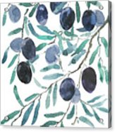 Olive Watercolor 2018 Acrylic Print