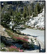 Olmsted Down The Road View Acrylic Print