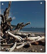 Olympic Peninsula Coast Acrylic Print