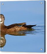 On A Clear Day You Can See.....your Reflection Acrylic Print