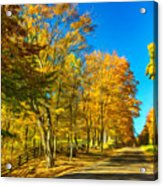 On A Country Road 4 - Paint Acrylic Print