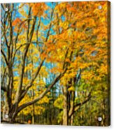 On A Country Road 5 - Paint Acrylic Print