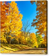 On A Country Road 6 - Paint Acrylic Print
