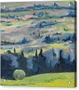 On A Field Of Dandelions Acrylic Print