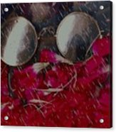 On A Rainy Day Its Fine To Be Inside Acrylic Print