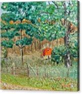 On Big Laurel In Autumn No.2 Acrylic Print