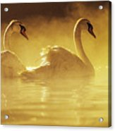 On Golden Pond Acrylic Print