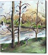 On Golden Pond Acrylic Print