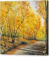 On Golden Road Acrylic Print