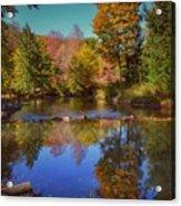 On Kinzua Creek Acrylic Print
