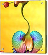 On Love Acrylic Print