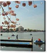 On The Cherry Blossom Dock Acrylic Print