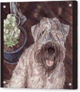 On The Deck Acrylic Print